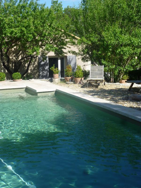 Pool and cottage - air conditioned cottage+pool st remy provence - Le Paradou - rentals