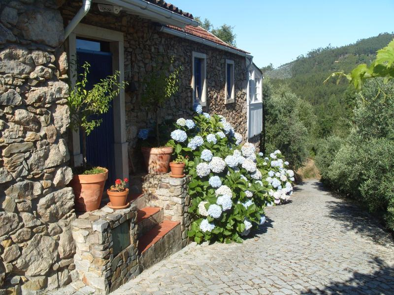 Front of the house - Casa da Lomba and Annexes - Figueiro dos Vinhos - rentals