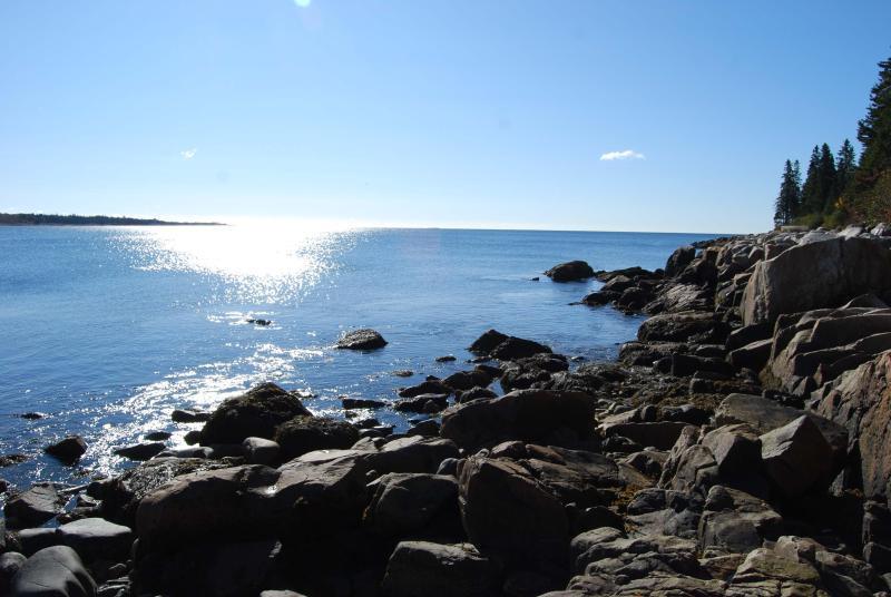 Oceanfront Home w/crashing surf in Schoodic/Acadia - Image 1 - Gouldsboro - rentals