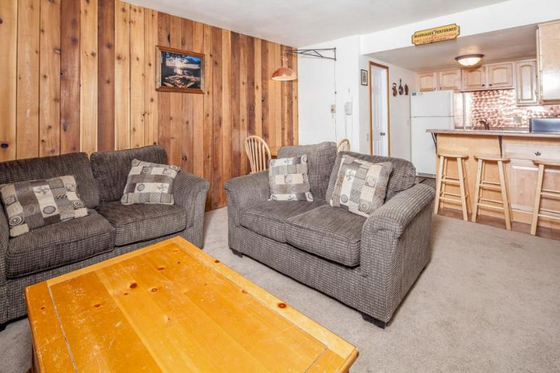 Dog-friendly condo right across the street from the Giant Steps ski lift area! - Image 1 - Brian Head - rentals