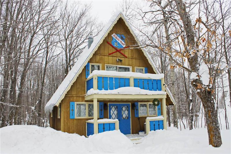 Houby Dom - Image 1 - Ironwood - rentals