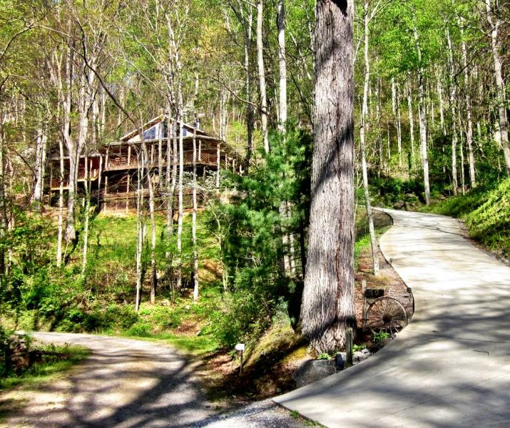 Wide Paved Driveway up to Chalet - Asheville Chalet – Waterfall right off deck, hot tub, hiking, sleeps up to 8 - Asheville - rentals