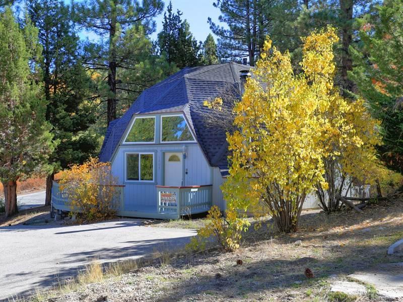 Moon Dome  #1319 - Image 1 - Big Bear Lake - rentals