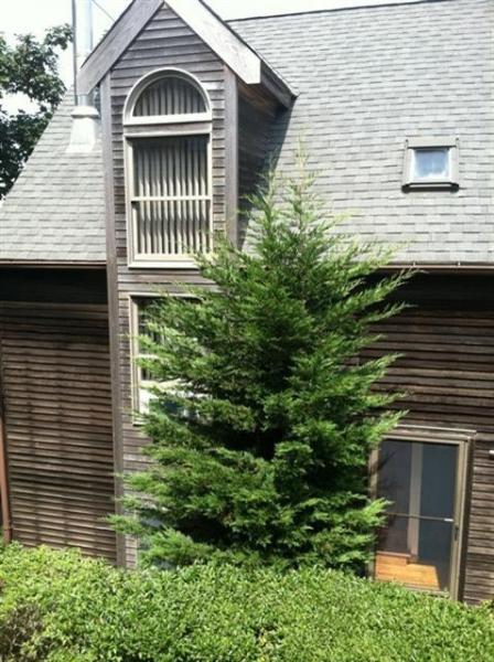 Exterior - Harborside 105243 - Provincetown - rentals