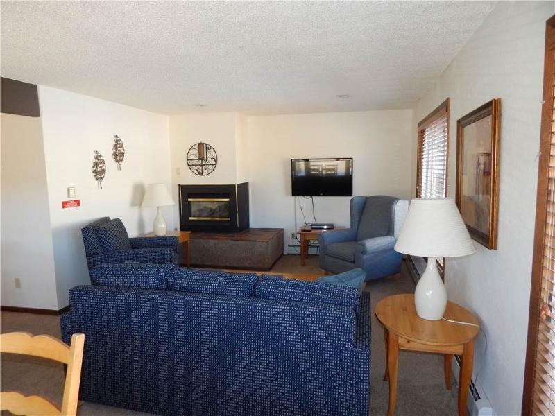 Lion's Gate Pines 118 - Image 1 - Winter Park - rentals