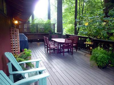 Hearthside Cabin, large back deck, propane BBQ - Hearthside Cabin - Cazadero - rentals
