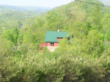 Eagles Nest - Eagles Nest - New Tazewell - rentals