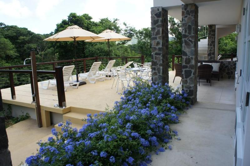 Flowers are blooming October 2014 - Francyn Villa - Lower Bay - rentals