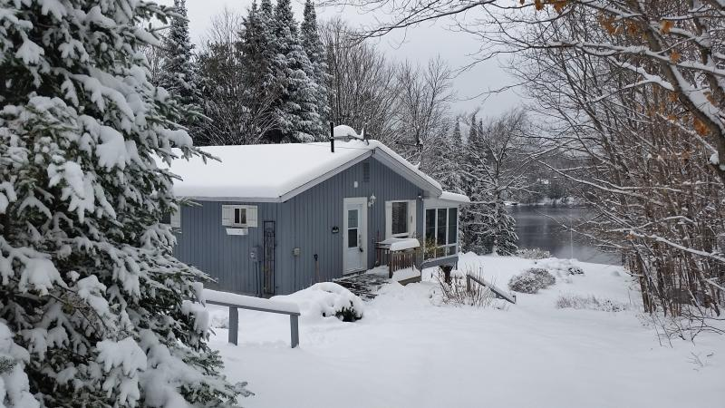 First view of the cottage - Restful Lakeside Cottage in Muskoka - Huntsville - rentals