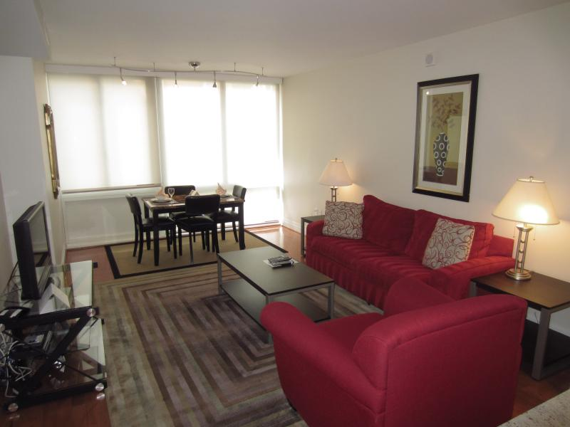 Living room  - Lux 1BR Apt Near Georgetown - Washington DC - rentals
