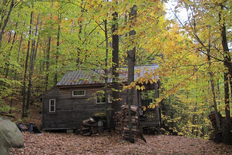 Thoreau's Eco-Cabin in Maine Woods - Image 1 - Denmark - rentals