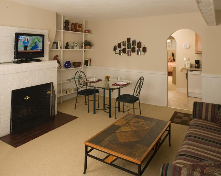 Living Room and Dining Area - Back Bay Vacation Rental 2 (M234-2) - Boston - rentals