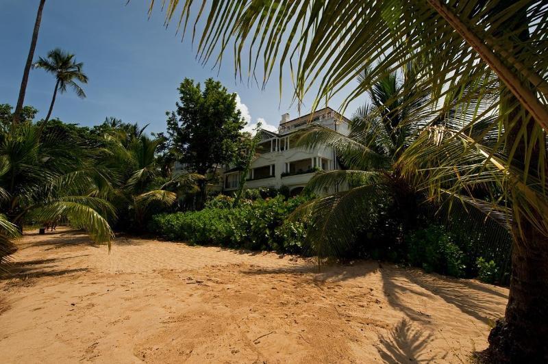Schooner Bay 102 - Contemporary Caribbean Chic - Image 1 - Saint Peter - rentals