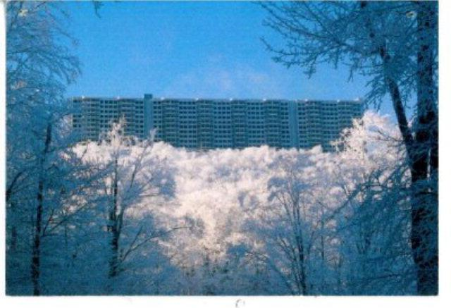 Gorgeous, Must see, Condo for only $80 a night! - Image 1 - Banner Elk - rentals