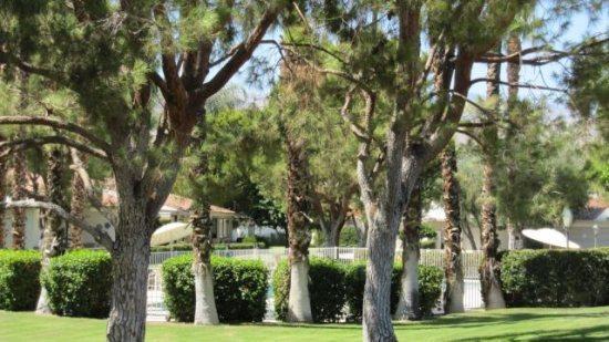 PAD29 - Rancho Las Palmas Vacation Rental - 3 BDRM, 2 BA - Image 1 - Rancho Mirage - rentals