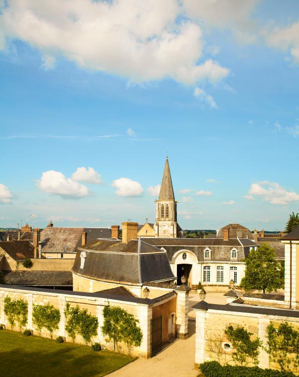 Luxury Chateau in the Loire Valley - Chateau de la Loire - Image 1 - Conflans-sur-Anille - rentals