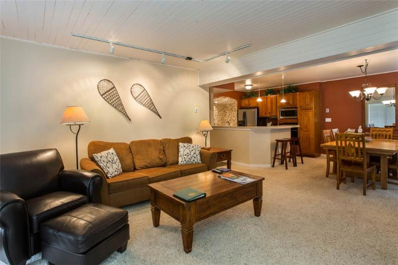Dulany 103 - Image 1 - Steamboat Springs - rentals