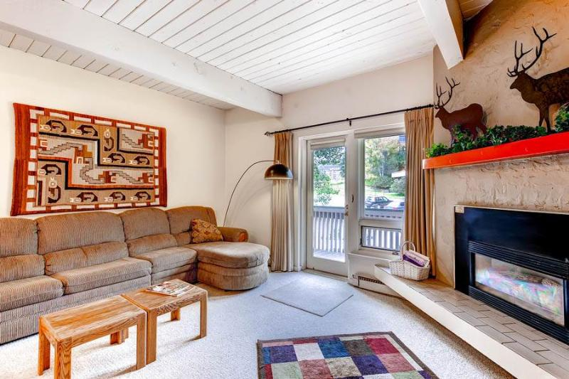 Ptarmigan House 10 - Image 1 - Steamboat Springs - rentals