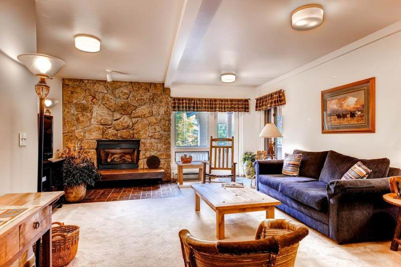 Ptarmigan House 17 - Image 1 - Steamboat Springs - rentals