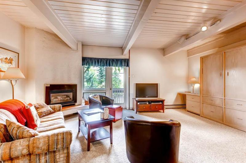 Ptarmigan House 24 - Image 1 - Steamboat Springs - rentals