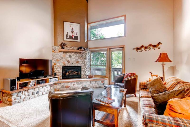 Ptarmigan House 38 - Image 1 - Steamboat Springs - rentals