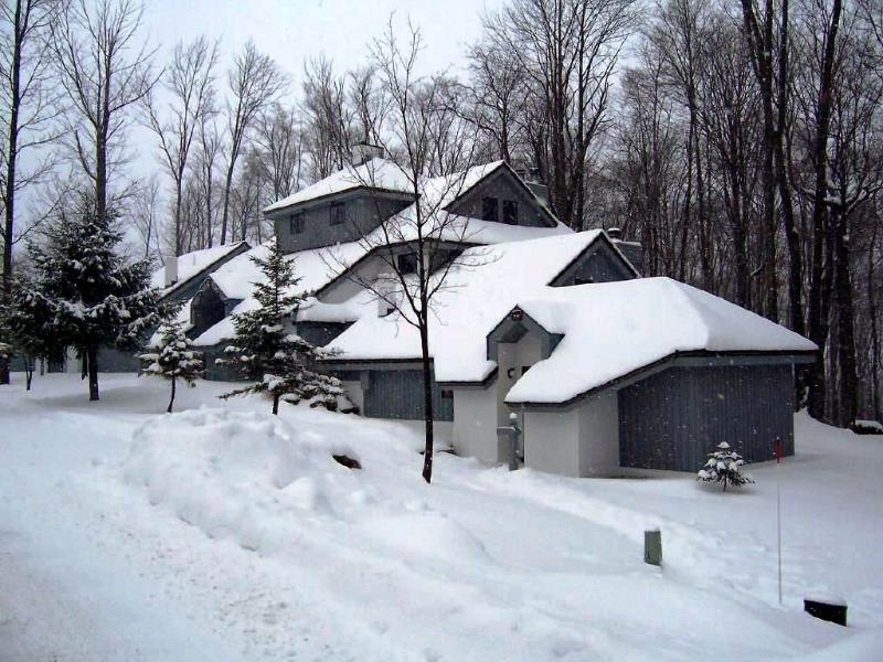 The Woods Resort & Spa-WV13 - Image 1 - Killington - rentals