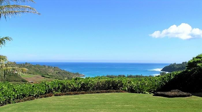 - Romantic Cottage - Kilauea - rentals