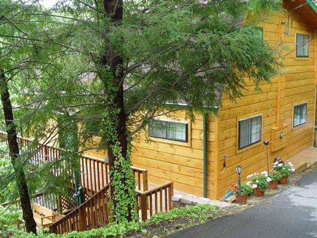 ALPINE VIEW - Image 1 - Gatlinburg - rentals