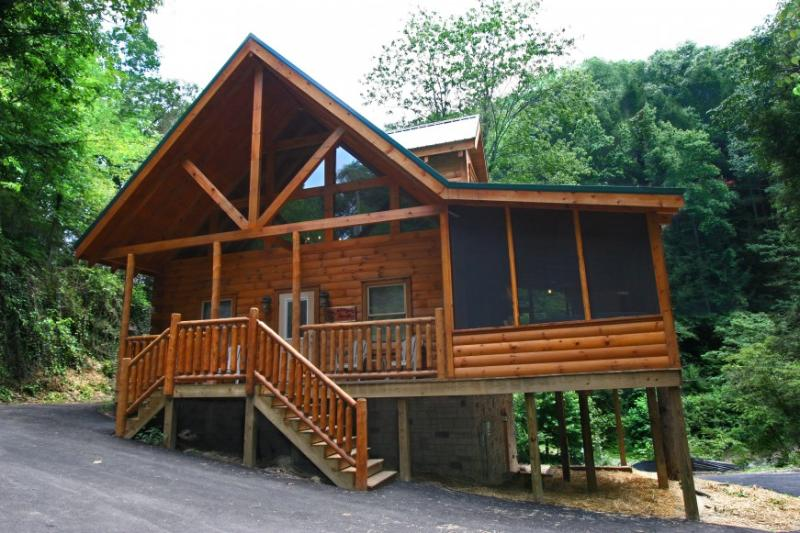 A PLAYERS PARADISE - Image 1 - Sevierville - rentals