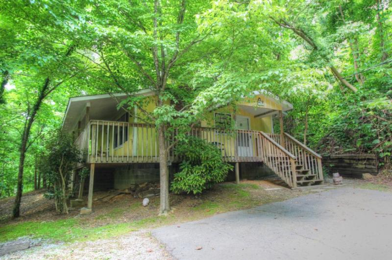 BIRD'S NEST - Image 1 - Gatlinburg - rentals