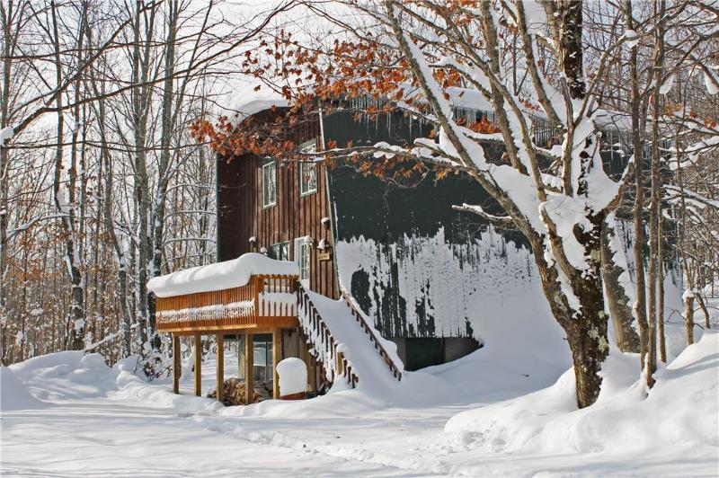 Bear Summit - Image 1 - Bessemer - rentals