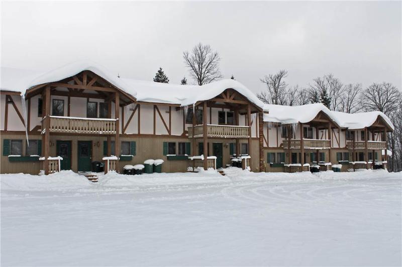 Alpen Villa 6 - Image 1 - Bessemer - rentals