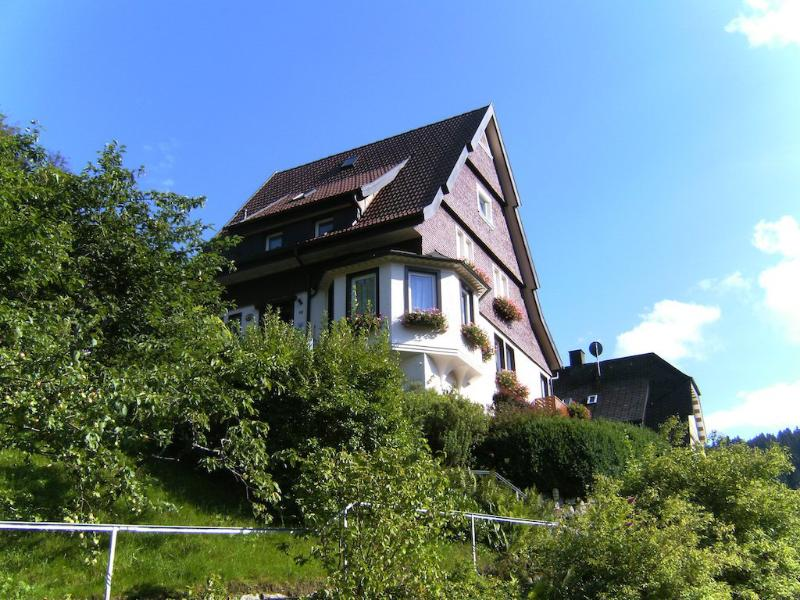 Double Room in Triberg im Schwarzwald - central, tranquil, nice view (# 4617) #4617 - Double Room in Triberg im Schwarzwald - central, tranquil, nice view (# 4617) - Triberg - rentals