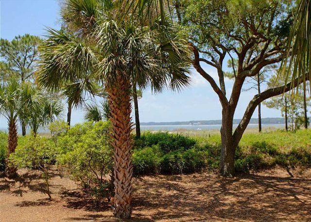 View from 1st floor patio - 1412 S. Beach Villa-Beachfront & Beautiful-Quick Walk to S. Beach Marina - Hilton Head - rentals