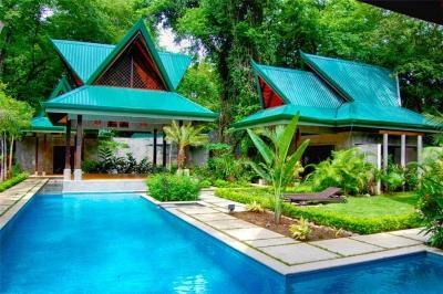 Spacious 7 Bedroom Villa in Playa Guiones - Image 1 - Nosara - rentals