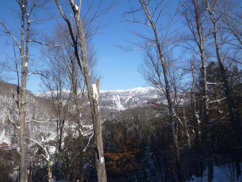 Mountain view from one of our 3 balconies - Condo in the old village with fantastic view - Mont Tremblant - rentals