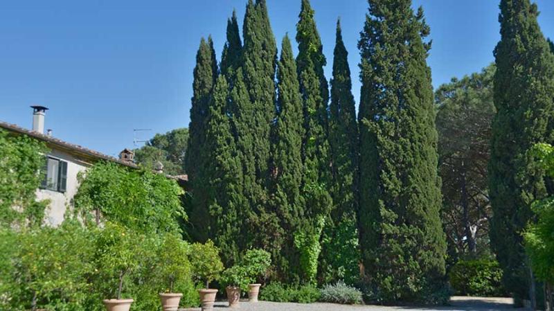 Casa Maremma - Image 1 - Pescia Romana - rentals