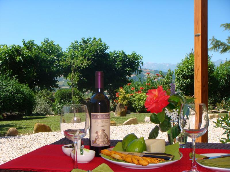 Relax in style with a glass of excellent Marche wine! - Luxury apartment with lovely pool & mountain views - Servigliano - rentals