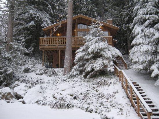 The front of Cabin 17 - Snowline #17 - The Tree House Over The Pond - Glacier - rentals