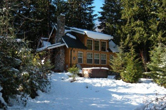 Mt Baker Rim Cabin #11 - This wonderful 2 story cabin is perfect for your family vacation needs with a private hot tub - Image 1 - Glacier - rentals