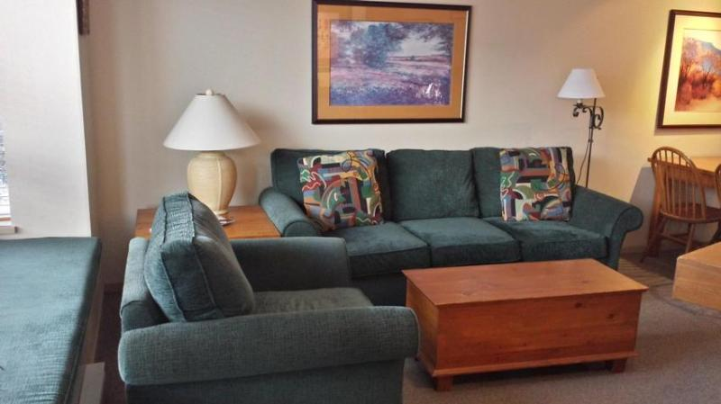 Cozy living room with gas fireplace, hi-def cable tv, free wi-fi internet, sofa bed and access to private patio with beautiful views of Blackcomb Mountain. - Cozy 1 bedroom with beautiful views - Whistler - rentals