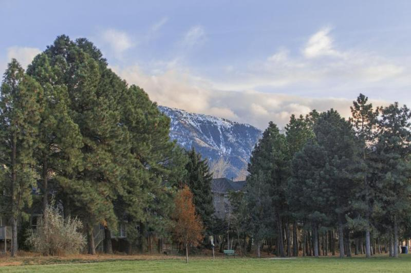 Oaks at Wasatch #11 - Image 1 - Salt Lake City - rentals