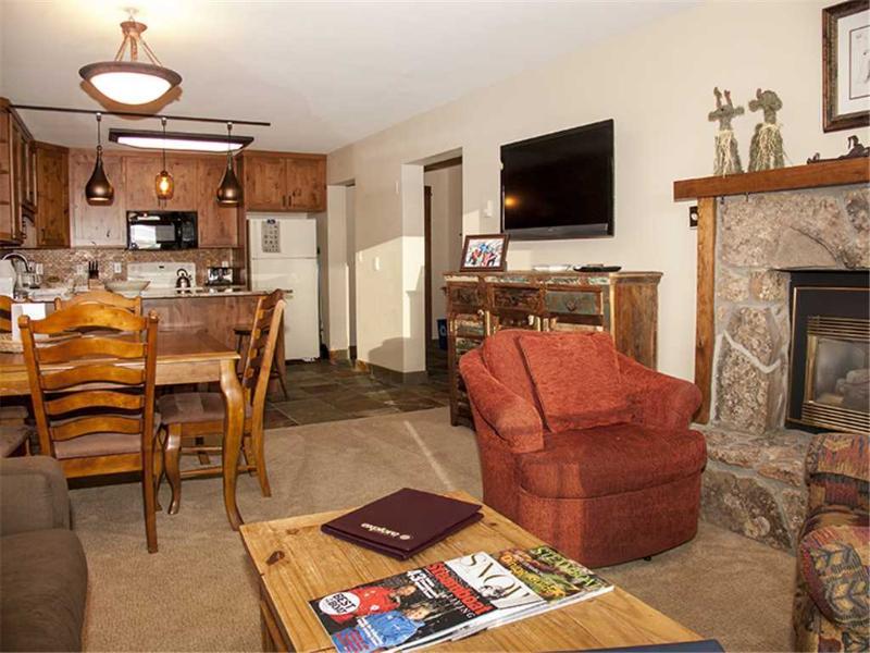 Bronze Tree 403 - Image 1 - Steamboat Springs - rentals