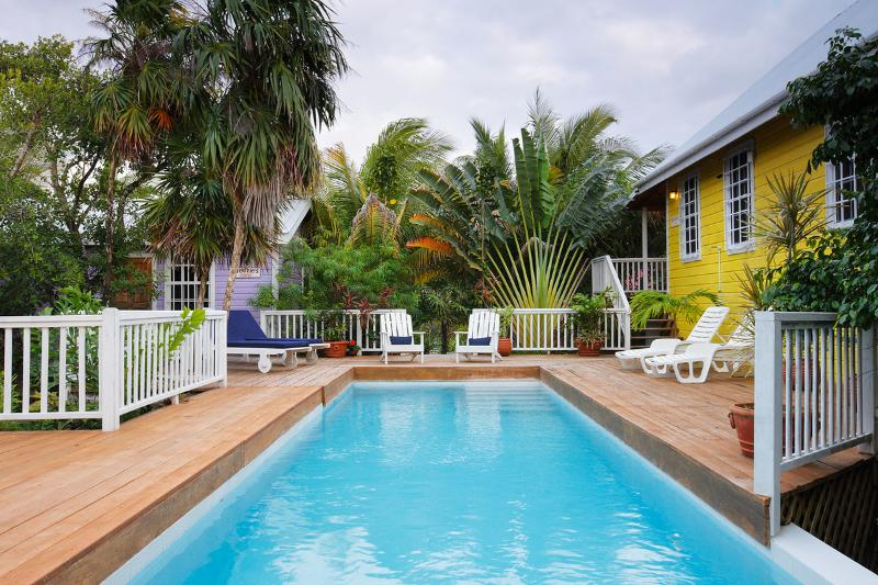 Weezie's Yellow Cottage 3 bedroom with a pool - Image 1 - Caye Caulker - rentals