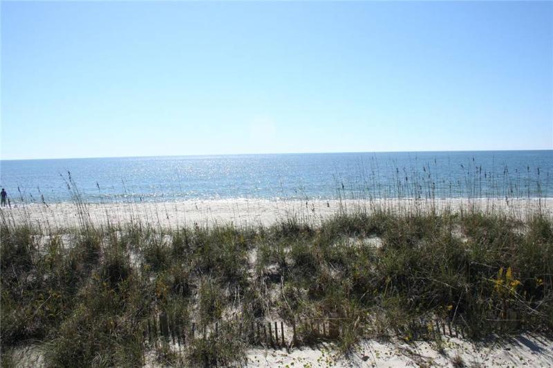 The Last Chance  627 East Beach Drive - Image 1 - Oak Island - rentals