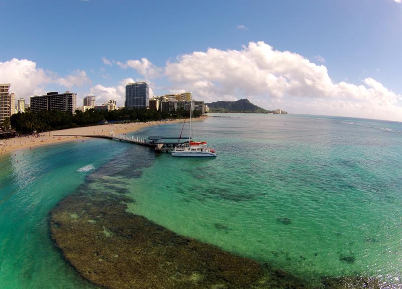Waikiki Beach and Diamond Head - Aqua Palms / Free Parking & WiFi / Close to Beach - Honolulu - rentals
