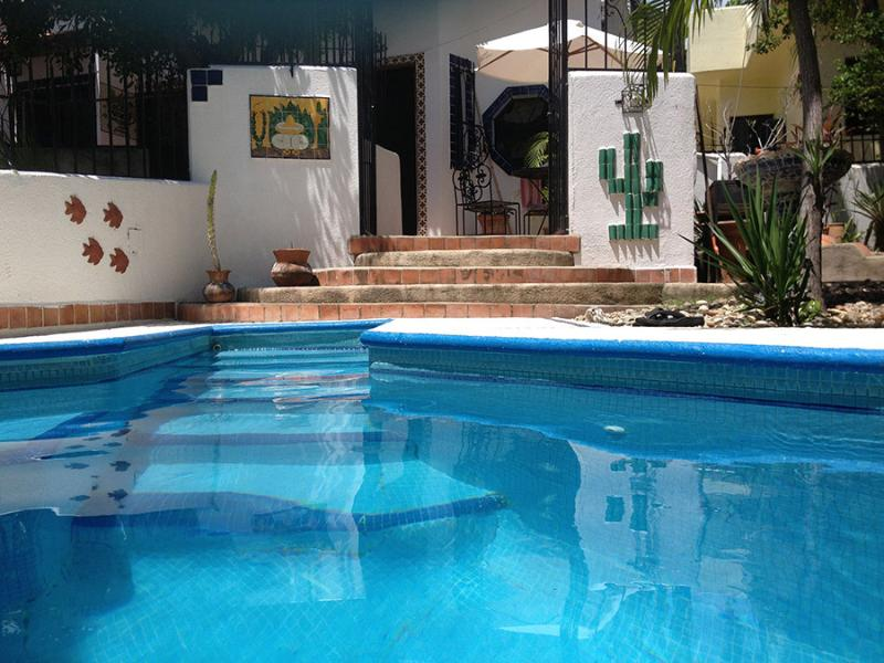 our plunge pool off the patio - Delightful, spacious 3 bedroom, 2 bathroom home - Puerto Escondido - rentals
