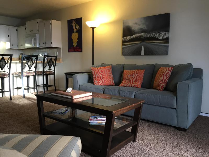 living room and pull out queen sofa - Budget Luxury - Dillon - rentals