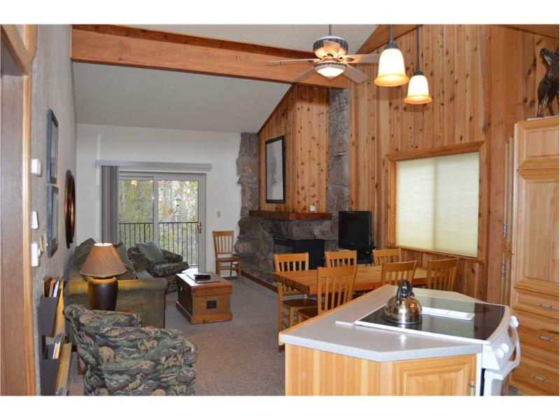 Beaver Village Condominiums #0534 - Image 1 - Winter Park - rentals