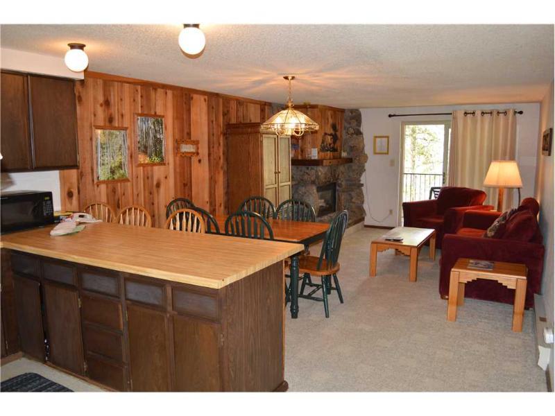 Beaver Village Condominiums #0623 - Image 1 - Winter Park - rentals